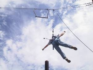 Henry jumped, but could not hang on to the trapeze
